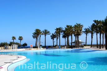 Hilton Malta swimming pool with sea view
