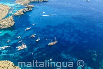 Photo of our school boat trip to Comino from the air