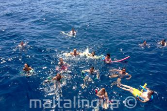 A large group of English language students swimming together