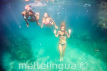 3 friends swimming underwater.