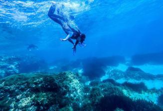 Explore Maltese Waters
